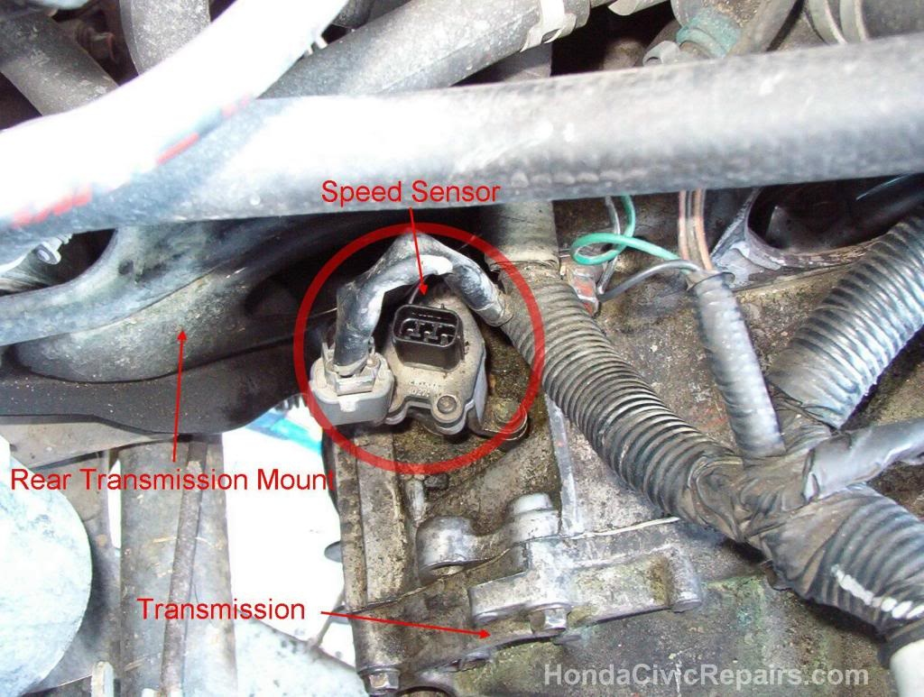 Where is opening to put manual transmission oil