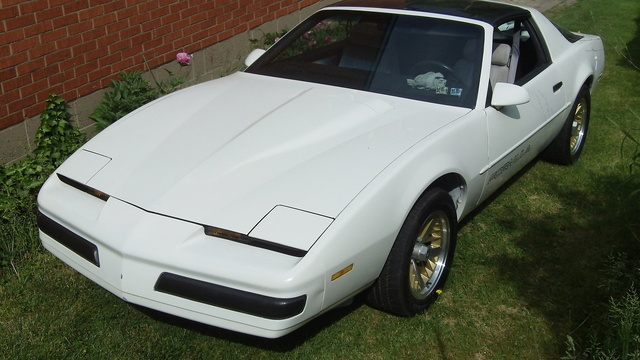 Picture of 1990 Pontiac Firebird Formula, exterior, gallery_worthy