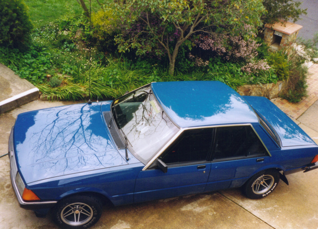 Picture of 1981 Ford Falcon
