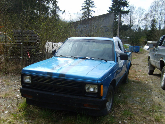 Picture of 1989 Chevrolet S-10