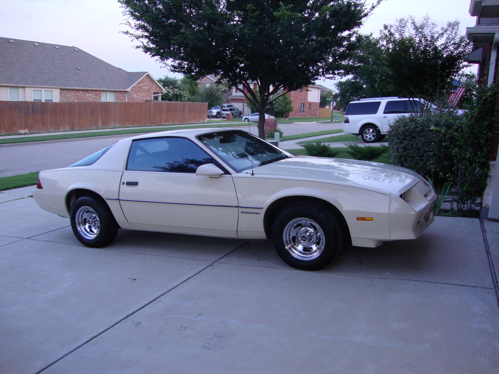 1980 Challenger For Sale 1979 Dodge Magnum Gt With T Top