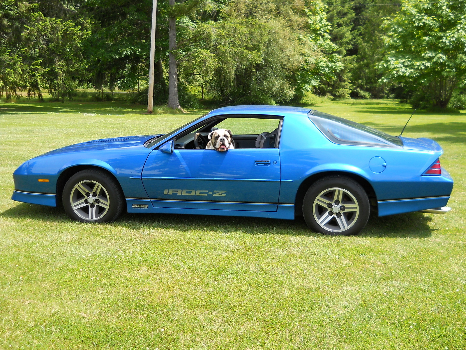 Chevrolet Camaro Questions How Much Is A 1985 Iroc Z Worth With 110 Miles On It Cargurus