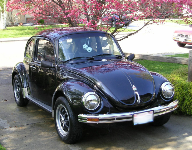 1973 Volkswagen Super Beetle, Kinda looked like this one...b4 I smashed da nose, exterior, gallery_worthy