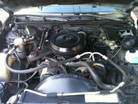 1986 Oldsmobile Cutlass Supreme picture, engine