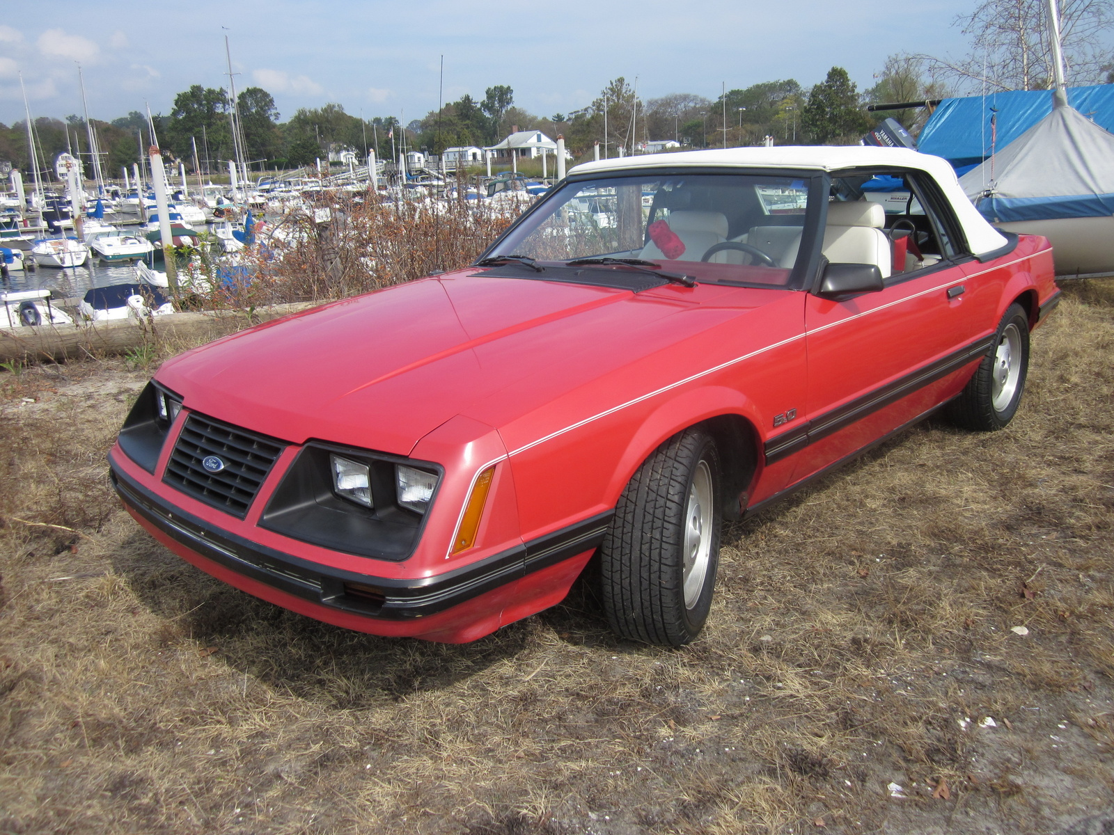 1983 ford mustang exterior pictures cargurus. Black Bedroom Furniture Sets. Home Design Ideas