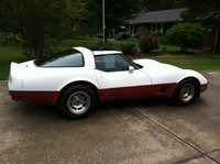 1981 Chevrolet Corvette Coupe picture, exterior