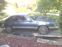 Picture of 1985 Ford Thunderbird, exterior