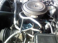 Picture of 1981 Chevrolet Malibu, engine