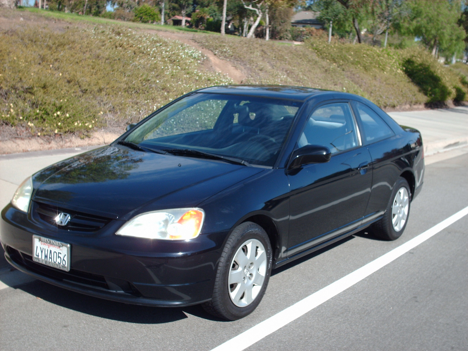 2002 Honda Civic Coupe Pictures Cargurus