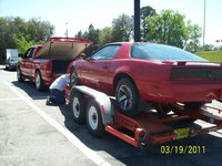 1984 Pontiac Firebird picture, exterior