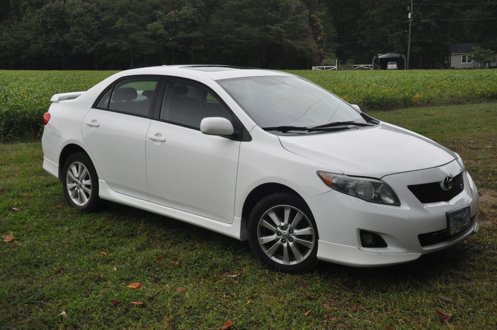 2009 toyota corolla - pictures