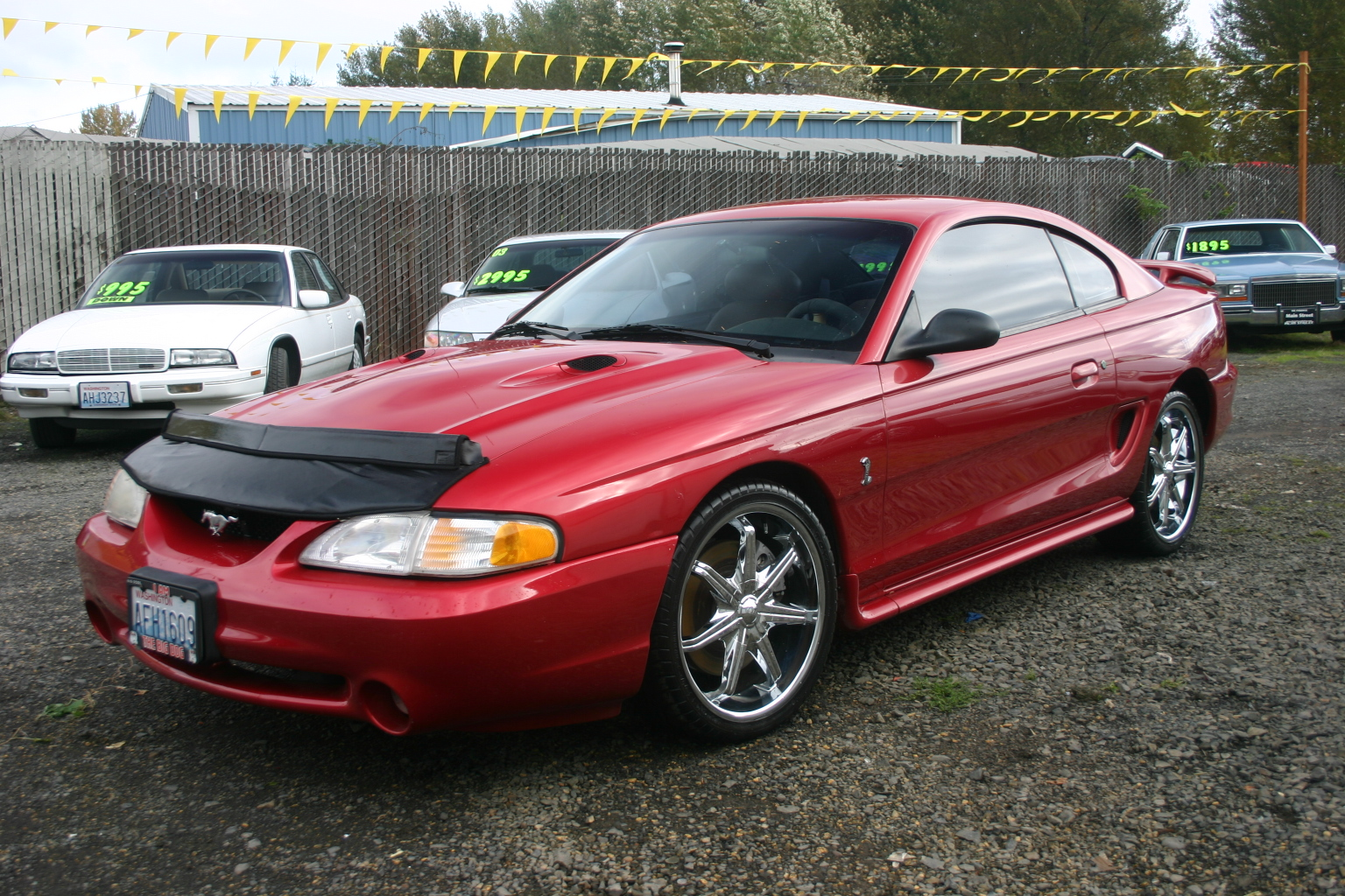 All Types 1996 mustang : Picture of 1996 Ford Mustang SVT Cobra 2 Dr STD Coupe, exterior ...