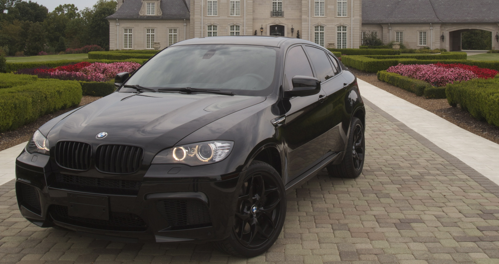 Picture of 2011 BMW X6 M