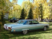 1976 Buick Electra Picture Gallery