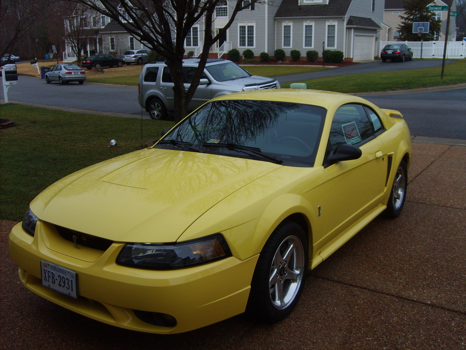 2001 mustang cobra images reverse search. Black Bedroom Furniture Sets. Home Design Ideas
