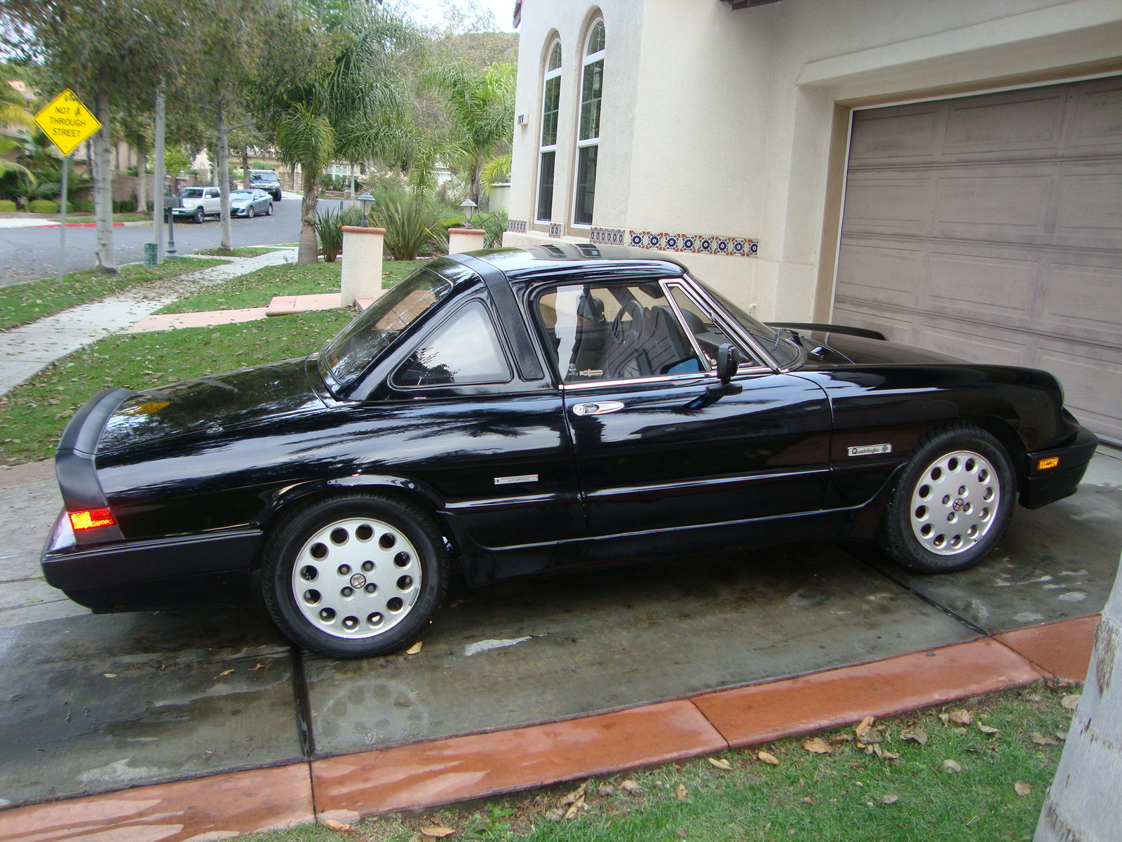 1984 alfa romeo spider veloce reviews