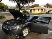 Picture of 2010 Nissan Maxima S, exterior, engine