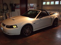 Picture of 2002 Ford Mustang GT Convertible, exterior, gallery_worthy