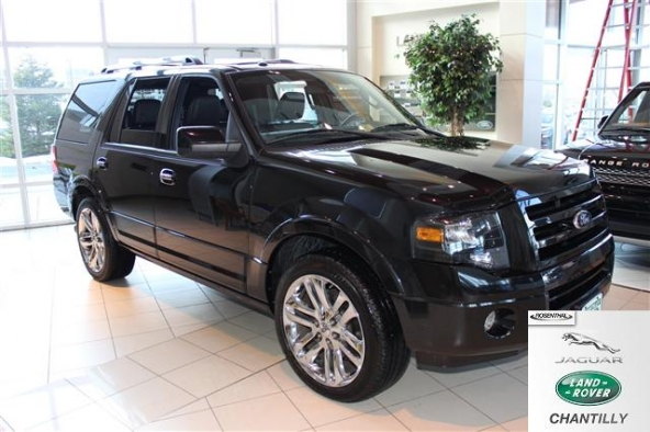 2010 Ford Expedition Limited picture, exterior