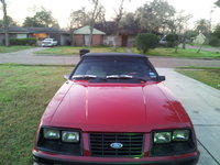 Picture of 1983 Ford Mustang GLX Convertible, exterior, gallery_worthy