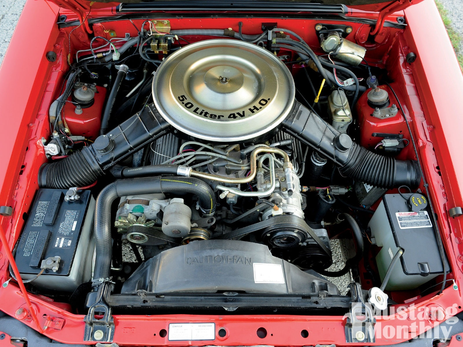 Picture of 1984 ford mustang gt350 exterior - Gas Mileage