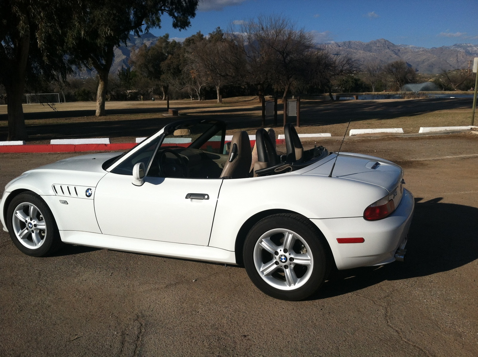 Picture Of 2000 Bmw Z3 2 3 Convertible Sexy Girl And Car