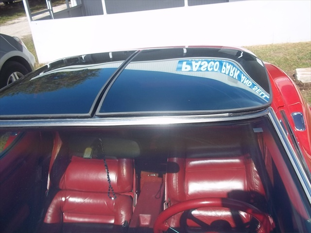 1981 Chevrolet Corvette Coupe, Picture of 1981 Chevrolet Corvette Base, interior, exterior