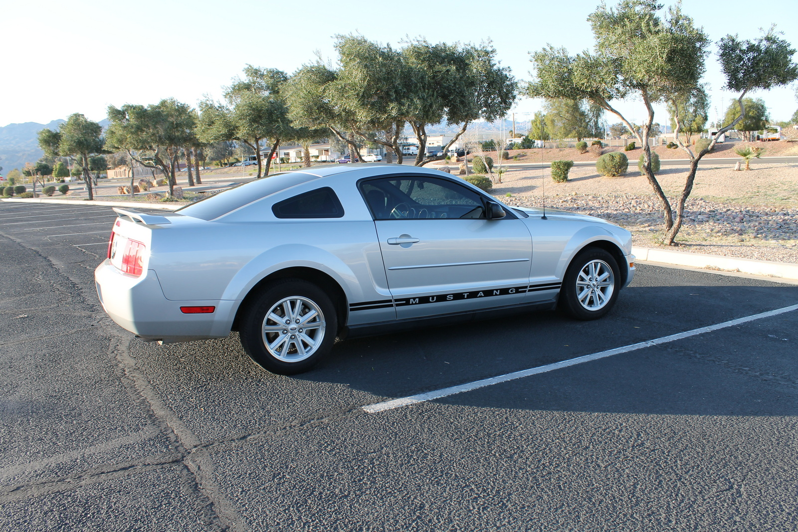2006 Ford Mustang Pictures Cargurus