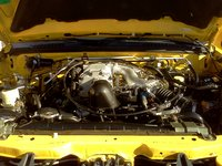 Picture of 2003 Nissan Xterra SE Supercharged, engine