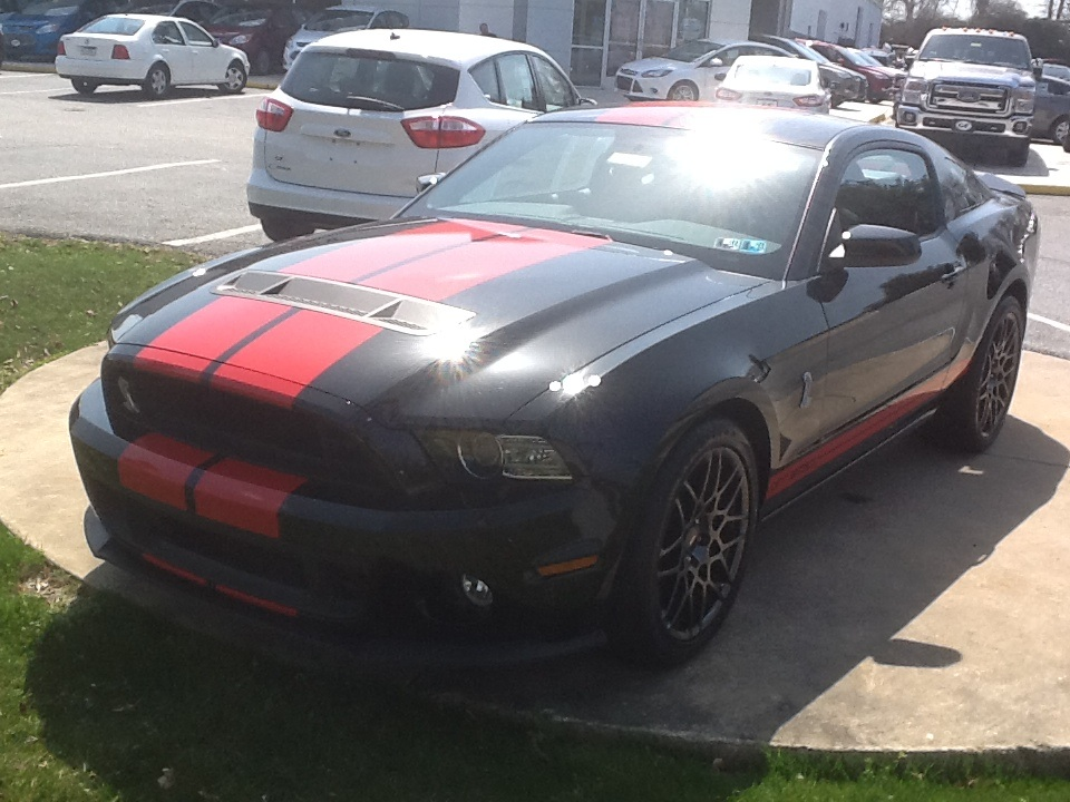 2014 ford shelby gt500 pictures cargurus. Cars Review. Best American Auto & Cars Review