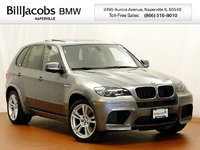 2010 BMW X5 M Overview