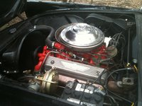 Picture of 1955 Ford Thunderbird, engine, gallery_worthy