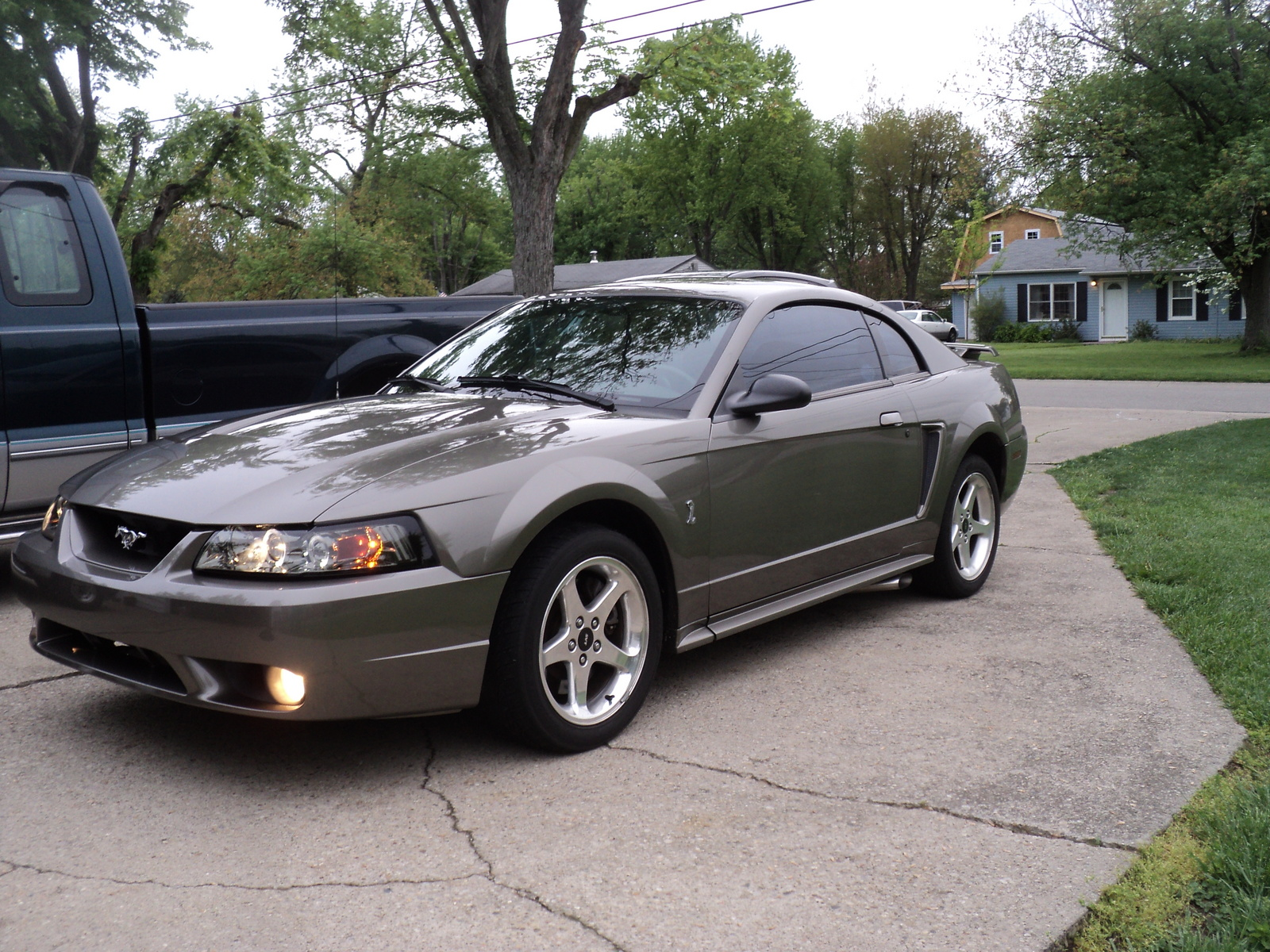 2001 ford mustang svt cobra car wallpaper. Black Bedroom Furniture Sets. Home Design Ideas