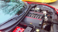 Picture of 1998 Chevrolet Corvette Convertible RWD, engine, gallery_worthy