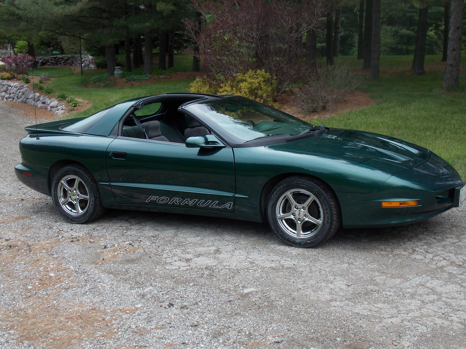 1994 Pontiac Firebird - Pictures