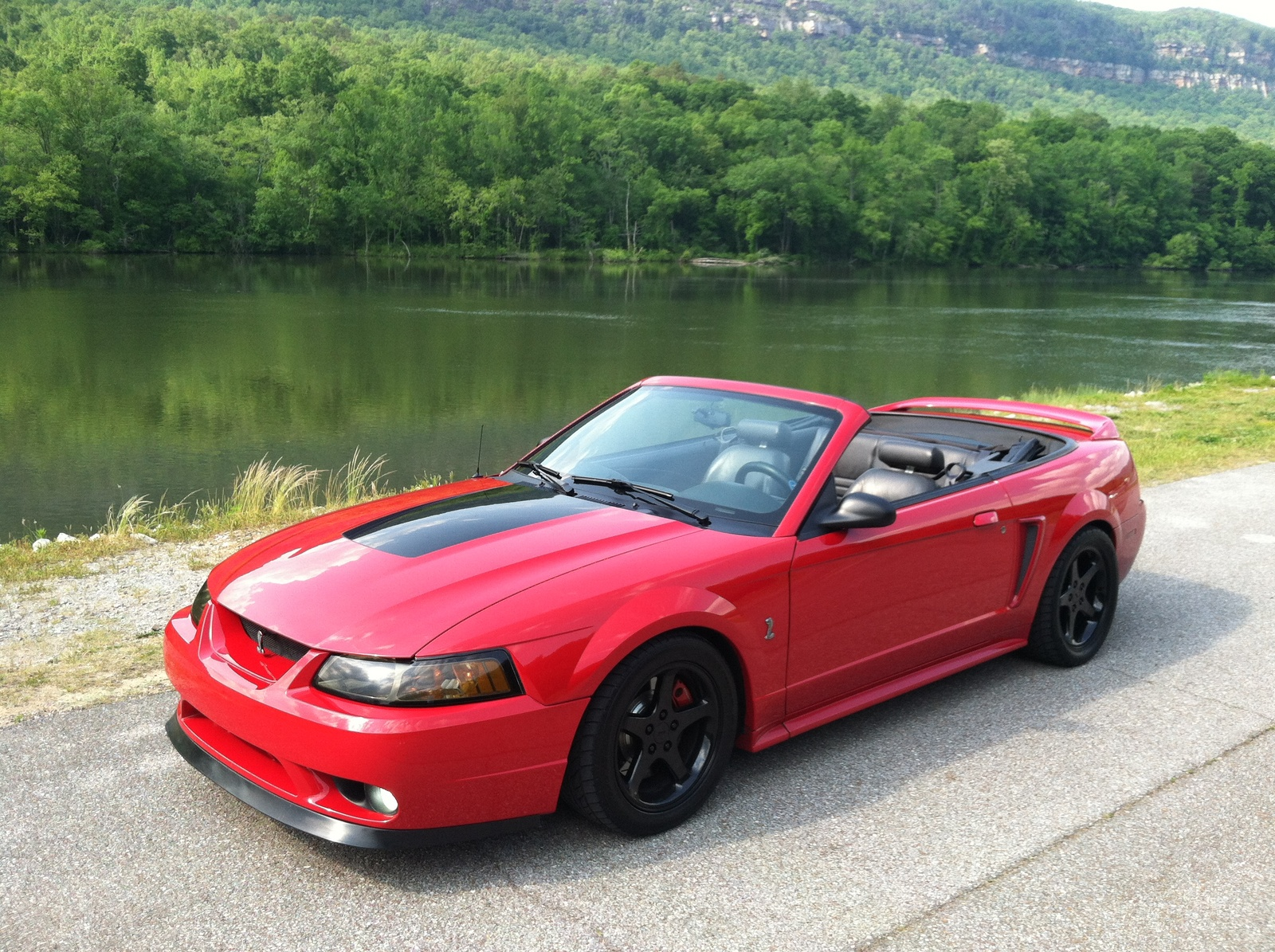Picture of 1999 ford mustang svt cobra 2 dr std convertible exterior