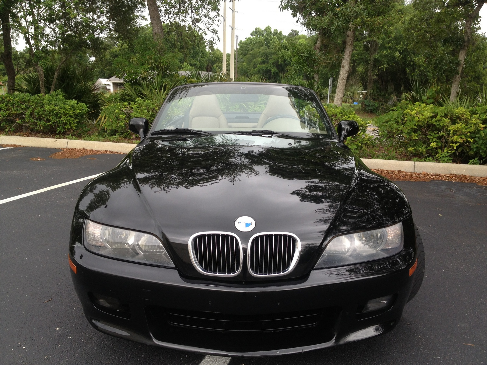 2001 Bmw Z3 Pictures Cargurus