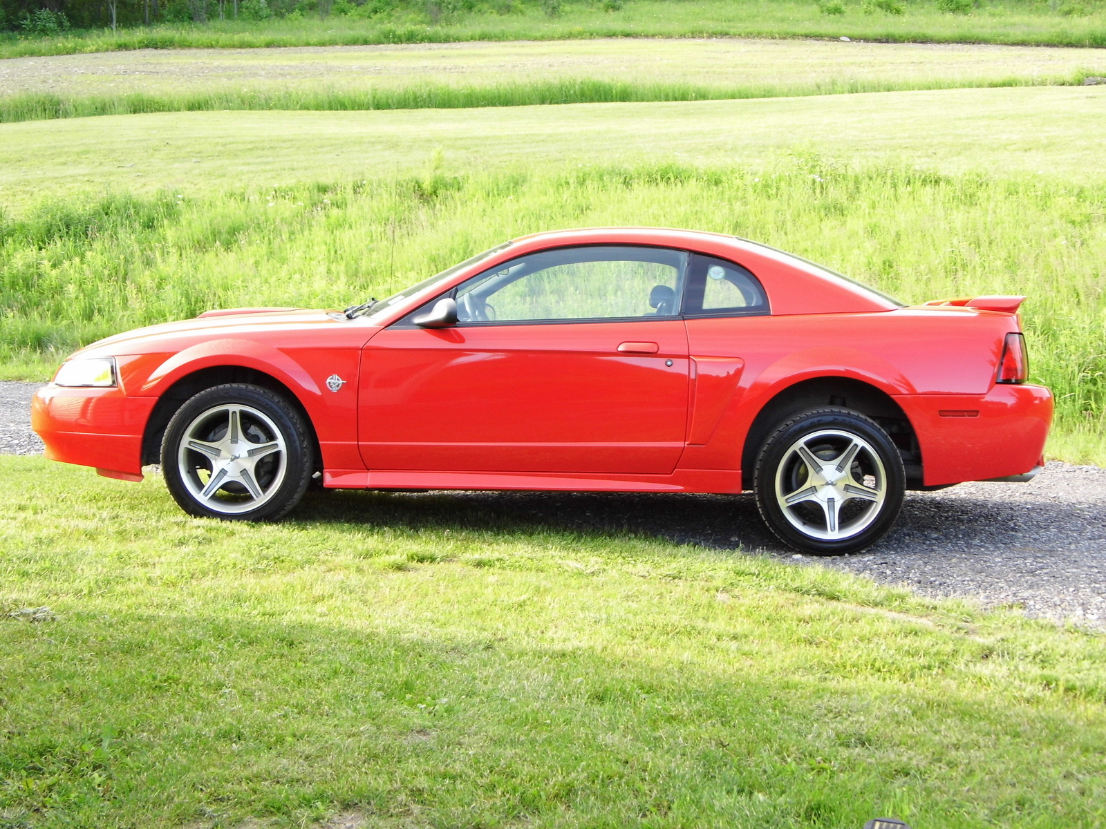 1999 ford mustang gt coupe picture exterior. Black Bedroom Furniture Sets. Home Design Ideas