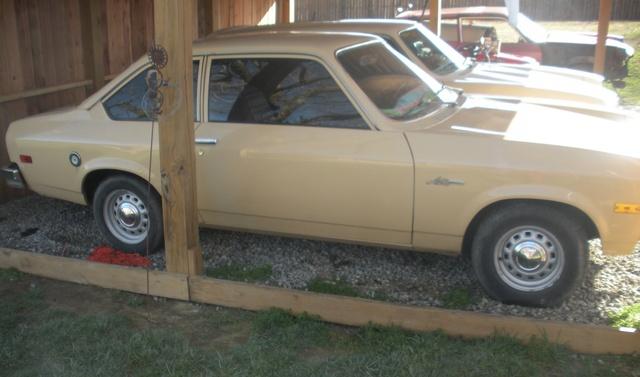 Picture of 1976 Pontiac Sunbird