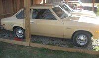 1976 Pontiac Sunbird Overview