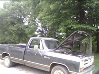Picture of 1986 Dodge Ram, exterior, gallery_worthy