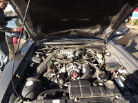 Picture of 2002 Ford Mustang Premium, engine