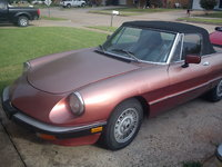 1983 Alfa Romeo Spider Overview