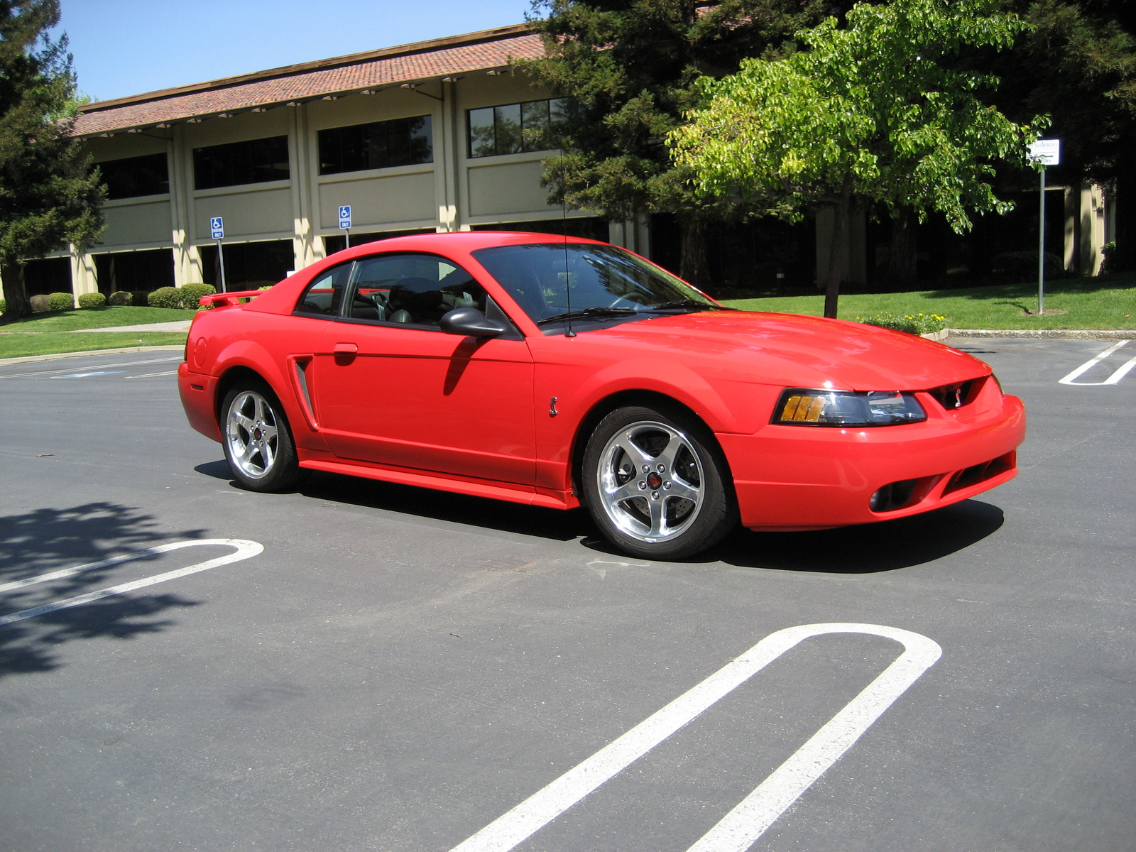 2001 mustang cobra images reverse search