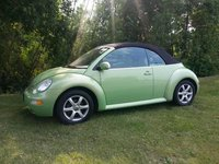 Picture of 2004 Volkswagen Beetle GLS 1.8L Convertible, exterior, gallery_worthy