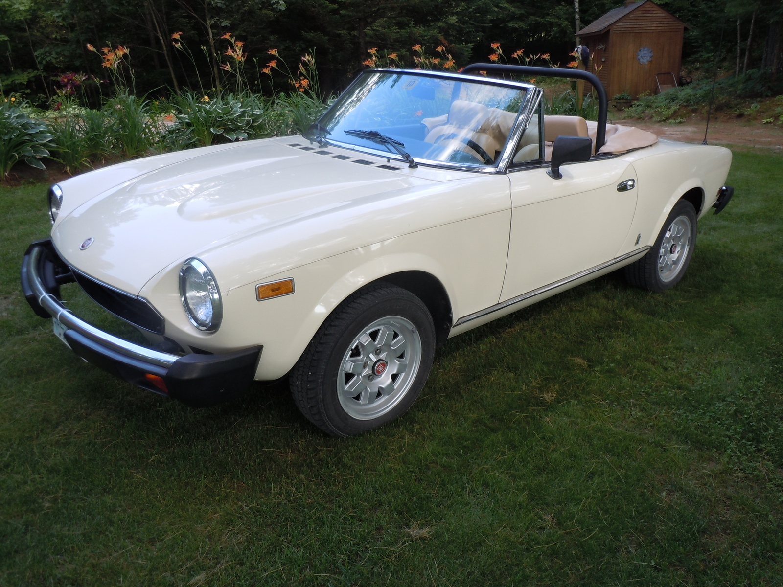 1982 Fiat 124 Spider Pictures C14105 pi36355888 on 1969 alfa romeo spider