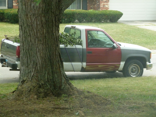 Picture of 1996 Chevrolet C/K 1500