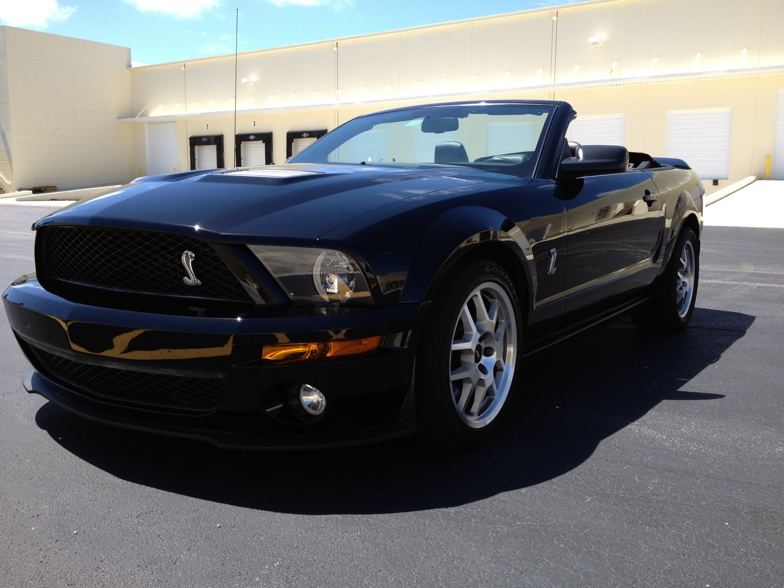 2008 Ford Shelby GT500 - Pictures - CarGurus