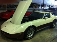 1981 Chevrolet Corvette Coupe, Picture of 1981 Chevrolet Corvette Base, engine, exterior