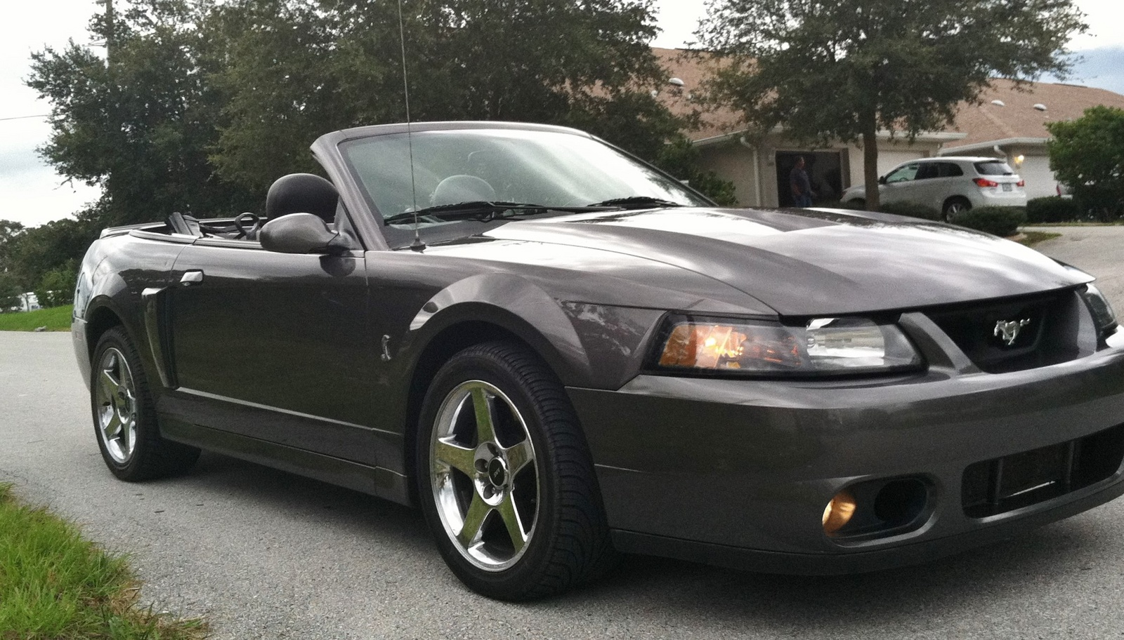 2003 ford mustang svt cobra user reviews cargurus autos post. Black Bedroom Furniture Sets. Home Design Ideas